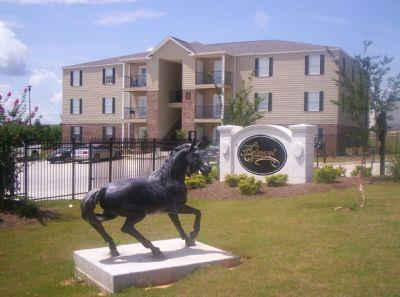 The Belmont Apartment Homes   Apartment In Hattiesburg, MS